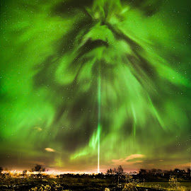 Aurora borealis by Hallgrimur P. Helgason - Landscapes Starscapes ( reykjavik, northern lights, aurora borealis, night, peace column )