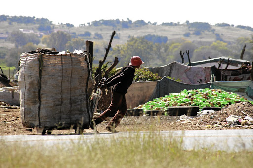 Recycling has provided many jobless people a chance to earn an income. / Gallo Images/Fani Mahuntsi