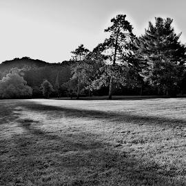 Early morning at Ellison Hill Park by Cal Brown - Black & White Landscapes ( field, hills, black and white, sunrise, new york, morning, city park, landscape,  )
