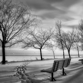 by Otto Mercik - Black & White Landscapes