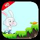 Crazy bunny adventure