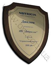 Photo: Наградной фигурный диплом партнерам компании NUTRICIA. Золотистый металл, деревянная основа