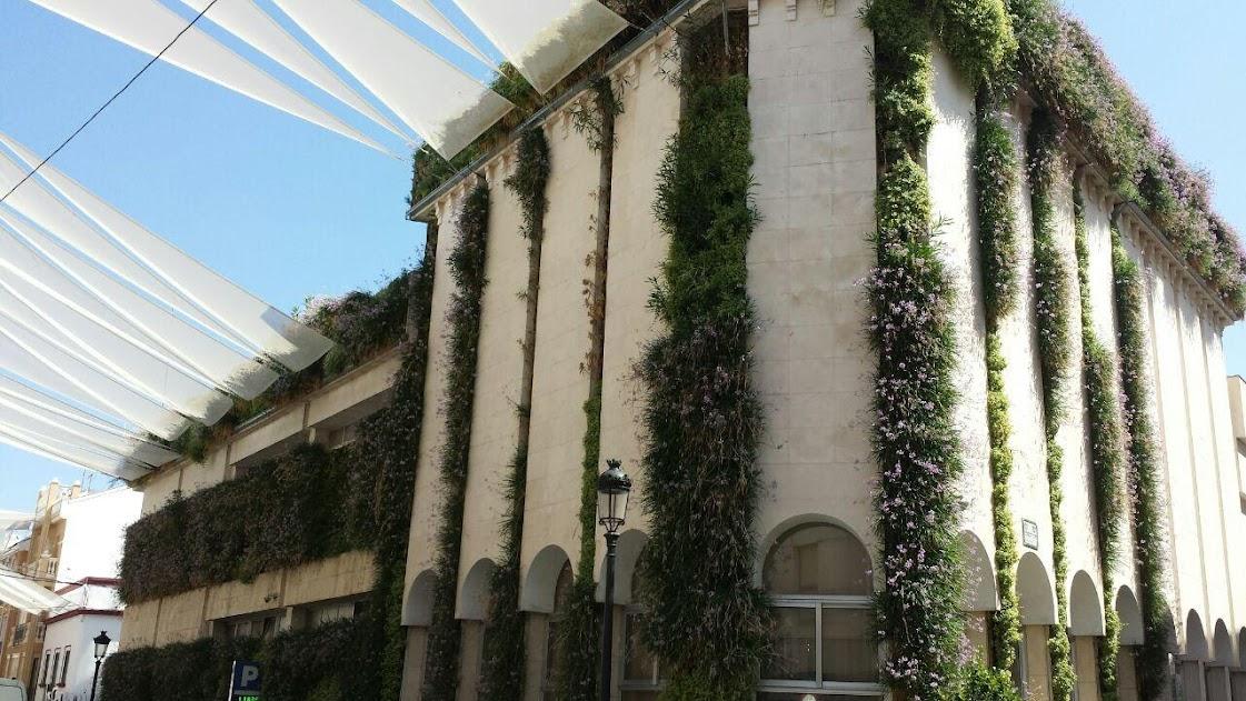 Jardín vertical del ayuntamiento de Lucena