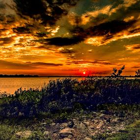Sunset and Horseshoe Lake by Greg Bennett - Landscapes Sunsets & Sunrises ( st louis, waterscape, lake, horseshoe lake, il, yellow, sun, organge, granite city, bushes, sunset, shoreline, trees, evening,  )