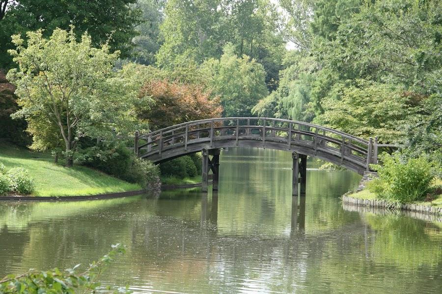 Japanese Garden Bridge by Suzie Andreychuk - Landscapes Waterscapes