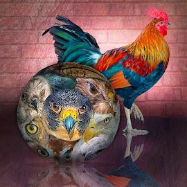 The one that got away... by William Underwood  - Digital Art Animals