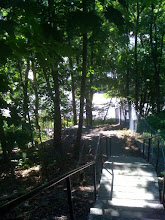 Photo: Out of Cornell, in Ithaca proper, a pretty stair path