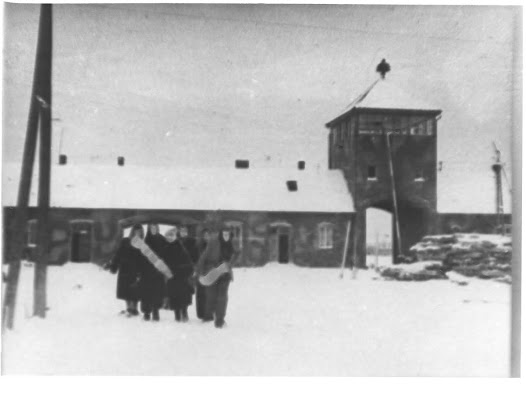 Evacuation and Liberation of the Auschwitz Camp  - Google Cultural Institute