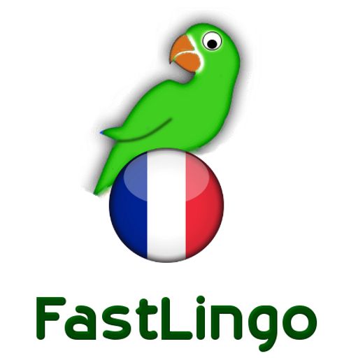 Learn French from scratch full
