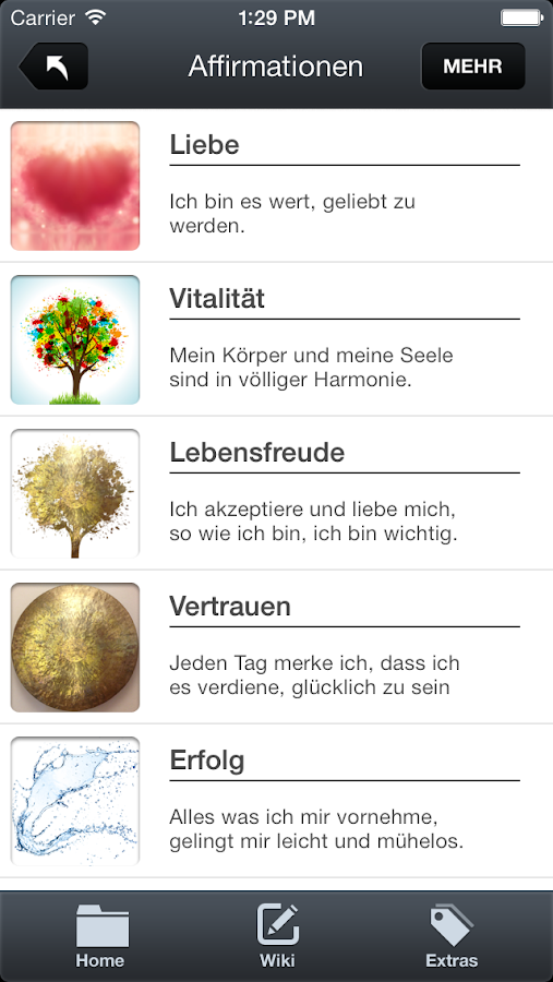 Kinesiologie App – Screenshot