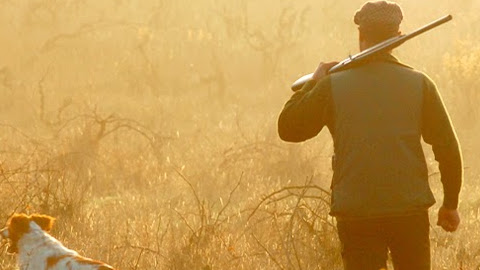 Entfernungsmesser Jagd Askari : Check askari jagd.des seo