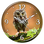 Owl Clock Live Wallpaper