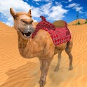 Dubai Camel Simulator 2020 - Arab Desert Transport icon