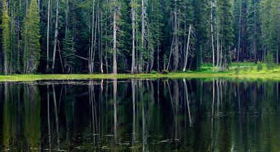 Photo: Siesta Lake