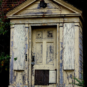 Front door by Janet Smothers - Buildings & Architecture Decaying & Abandoned (  )