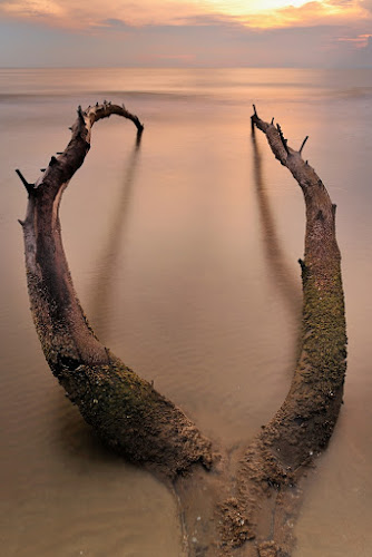 by Herman  Noh ( Kajong ) - Landscapes Waterscapes