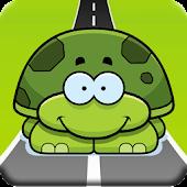 Turtle Highway 3D