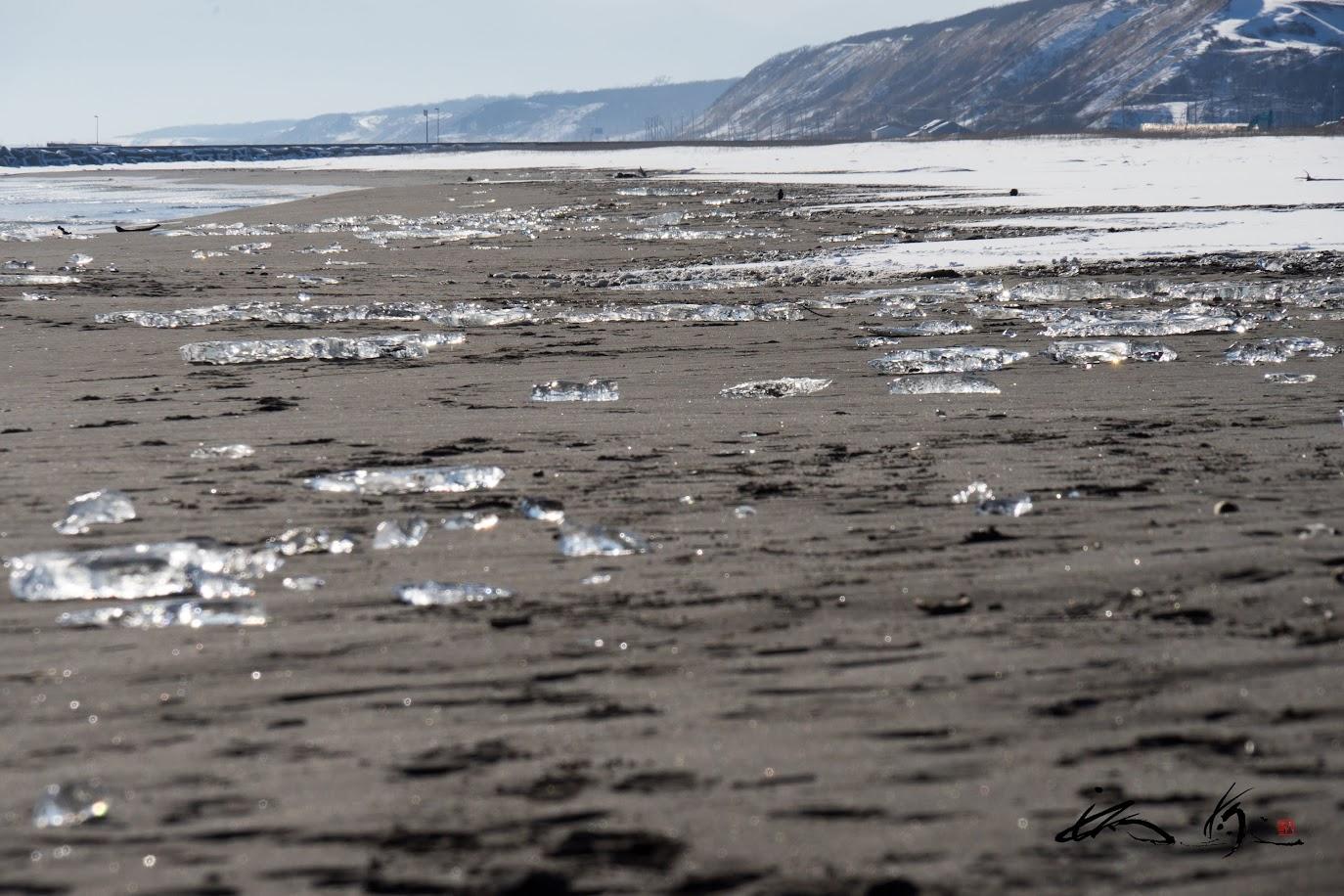 砂浜に打ち上げられた氷の塊