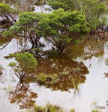 Photo: [RO] Peisaj lacustru în miniatura. Ïn zona muntoasa din apropiere de Goro  [EN] Lacustrian landscapein miniature. Mountainous area near Goro  #hqsplandscape , +100379827397924071303 curated by +115530531530181491807 +110260771074797936351+116628989703618447102+108566334850399183206 +102642362776273520722+102650561655114832408+100657331649343801873