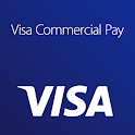 Visa Commercial Pay icon