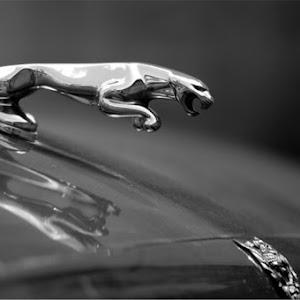XJR  X308 Superchargerdのカスタム事例画像 soraさんの2019年11月16日19:24の投稿