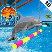 Wasser Park Delphin Show Wasser Welt Delphin Spiel