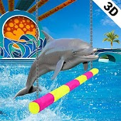 Dolphin Show My Dolphin Games