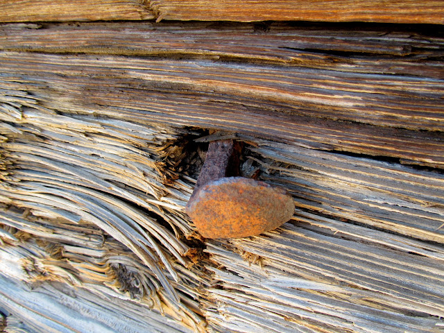 Railroad spike in a tie used to build the cabin