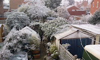 Photo: Bloomin cold! Its minus 10!