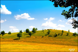 Photo: Mecklenburg Lake District - the land of a thousand lakes and thousands cattle
