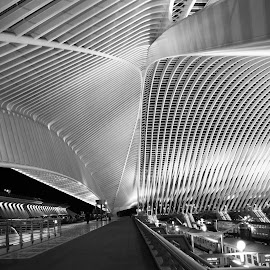 railway Station by Ni Francisco - Buildings & Architecture Architectural Detail ( light, railway, black and white, belgium, photography, architecture,  )