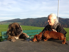 Photo: 7 Jahre mit Freund und Hausgenosse Quiditch & Mariann