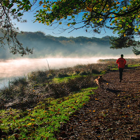 One Man and His Dog by Michael Ripley - Landscapes Waterscapes ( water, jogging, tree, lake, dog, man, mist )