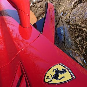 カリフォルニア F149 DCT 2010年式のカスタム事例画像 あらいださんの2019年01月26日16:42の投稿