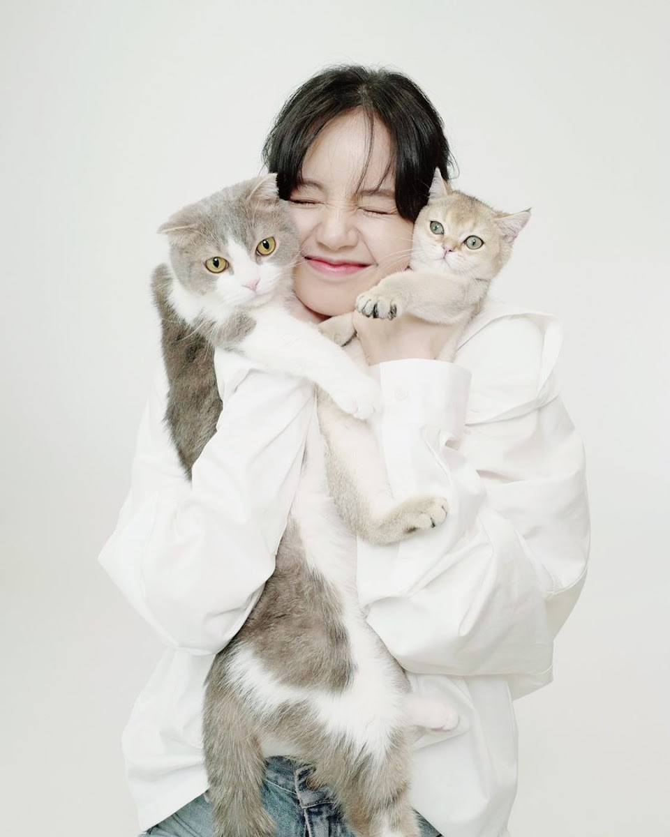 lisa with some cats