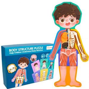 Puzzle educativ copii - Corpul uman Baiat