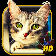 Cute Love Cat APUS Live Wallpaper APK