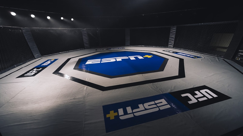 UFC Ultimate 100 Knockouts