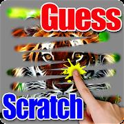 Scratch - Guess