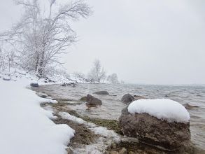 Photo: Snow on rocks and trees in the lake at Eastwood Park in Dayton, Ohio.
