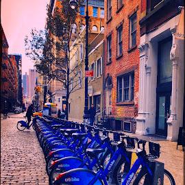 Blue bikes by Rosemary Gamburg - City,  Street & Park  Street Scenes ( #downtownny #rentabike #bluebikes #oldstreets #cobblestones )