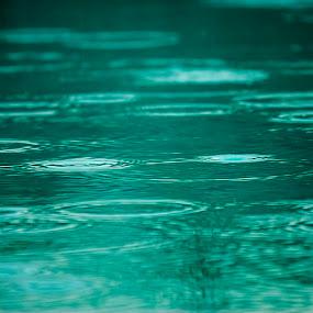 by David Shearer - Landscapes Weather