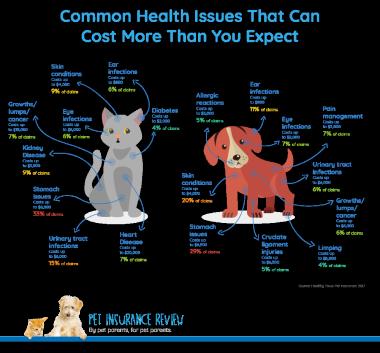 pet insurance costs
