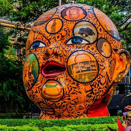 the head by Hariharan Venkatakrishnan - Artistic Objects Still Life