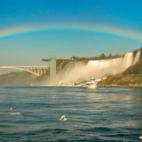 Rainbow bridge  by Steve Weston - Landscapes Waterscapes ( waterfall, bridge, rainbow, river )