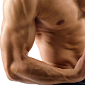 Download Best Forearm Exercises APK for Laptop