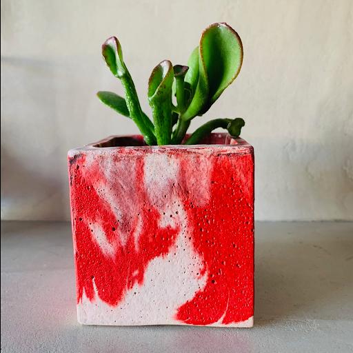 pot en béton marbré rouge avec succulente
