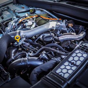 メガーヌ BBM5M GT 2018yのカスタム事例画像 フトポンさんの2019年05月17日19:03の投稿