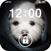 Screen Lock Cute Pet