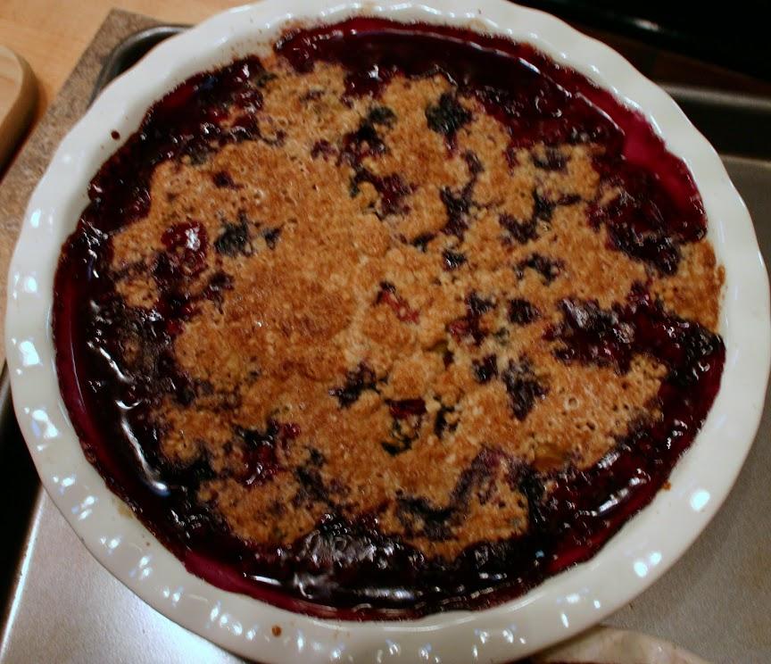 Rhubarb & Blueberry Crisp